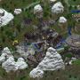 Map8 Livemap